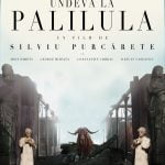 Somewhere in Palilula by Silviu Purcărete - CINEPUB