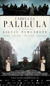 Somewhere in Palilula by Silviu Purcărete - CINEPUB