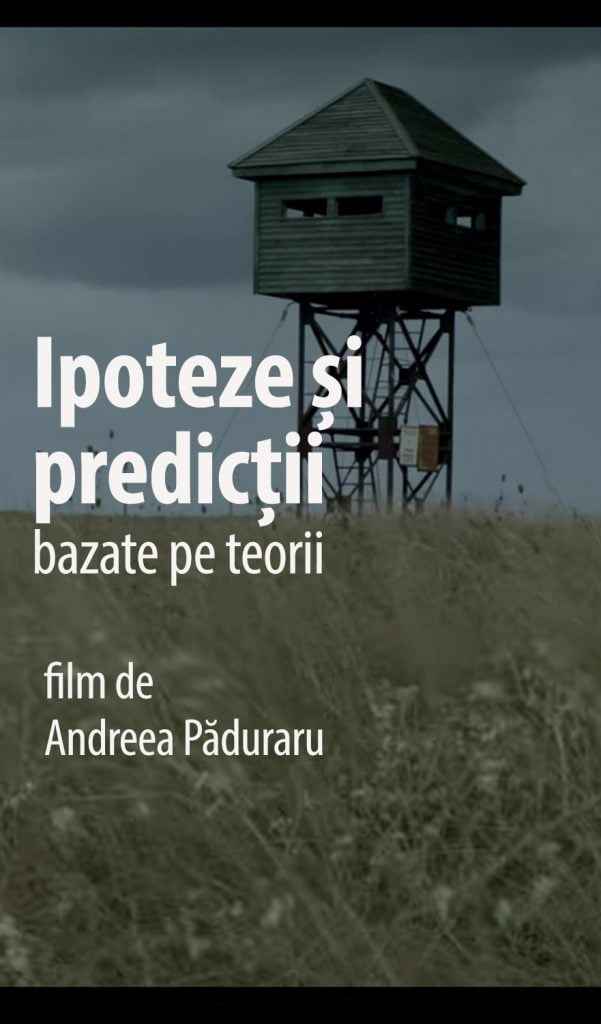 Hypotheses or predictions based on theories by Andreea Păduraru - CINEPUB