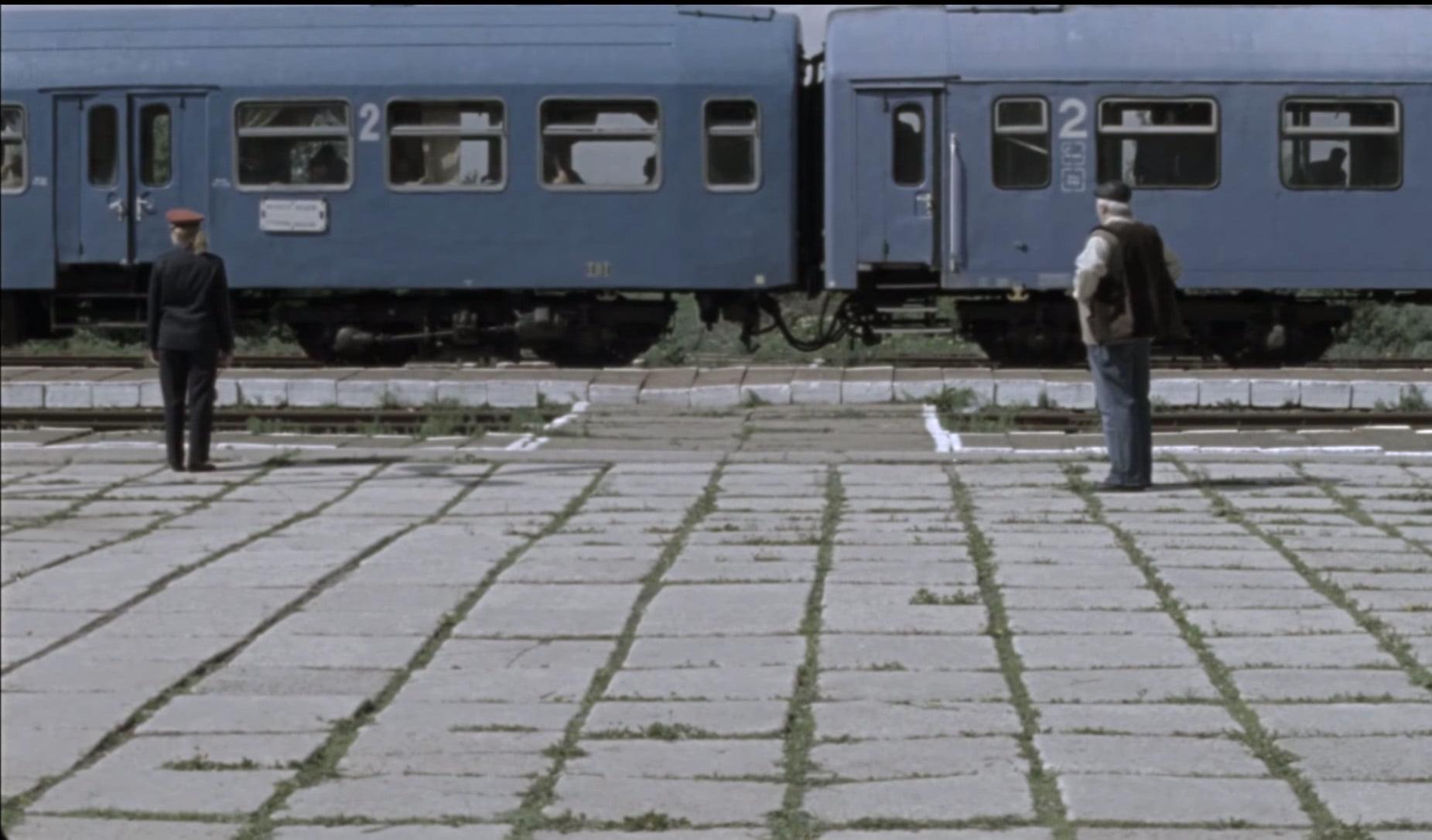 The Other Irene by Andrei Gruzsniczki - CINEPUB