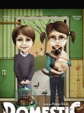 Domestic by Adrian Sitaru - CINEPUB
