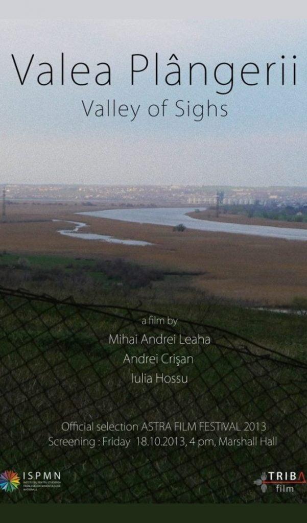 Valley of Sighs by Mihai Andrei Leaha, Andrei Crișan, Iulia Hossu - CINEPUB